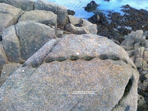 Abandoned worked stone at Sandycove