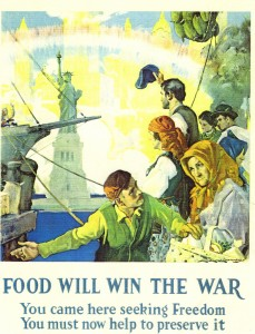 Because of the global effects of WW1, attention to food production became just as important as soldiers and equipment.