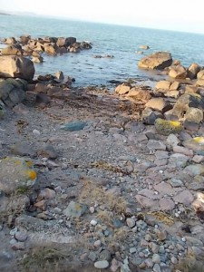 Remains of ancient Road or boat slip at CrossFintan Point, Carnsore.