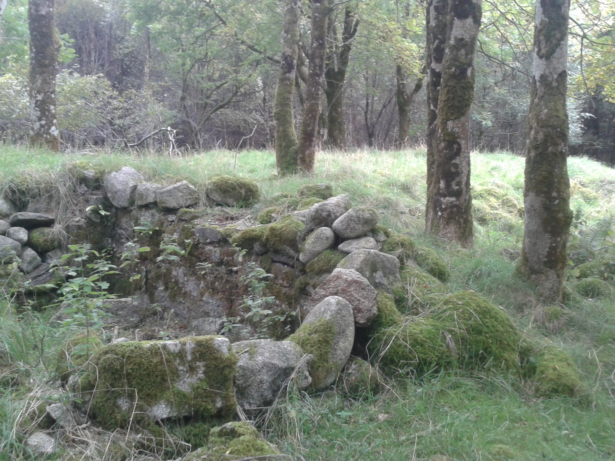 Ruined building at Marlfields and small walled 'cell'.